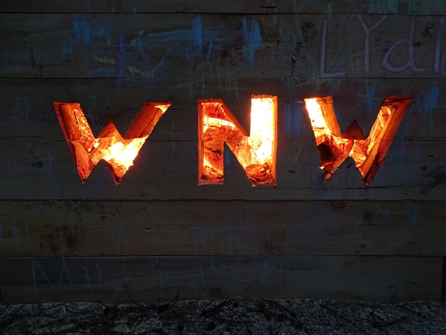 Das WaldNetzWerk leuchtet